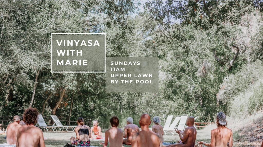 Vinyasa Yoga @ Upper Lawn